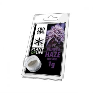 10% purple haze cbd hasj