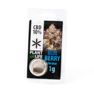10% blue berry cbd hasj